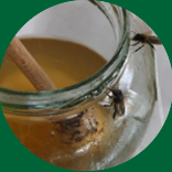 Honey from 	Ripollès
